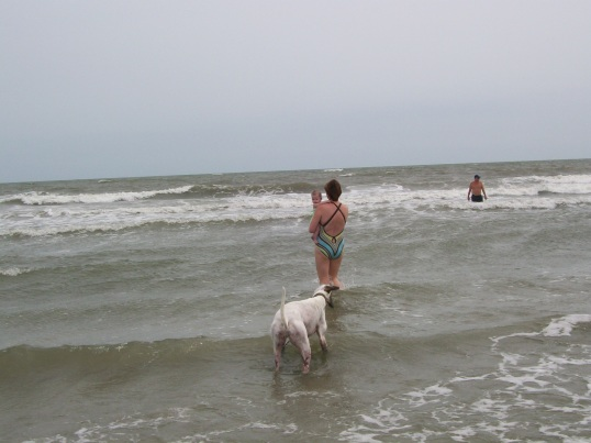 Greyhounds like the water too, although Cloudy never did master the 'jumping of waves'.
