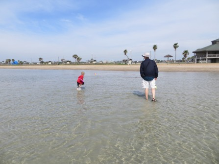 courtousy  of Beach treasures