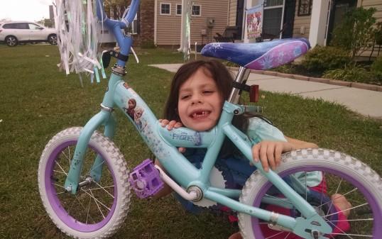 froz bike