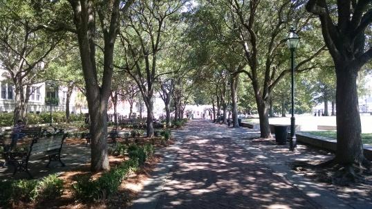 Lots of shade at the Waterfront Park