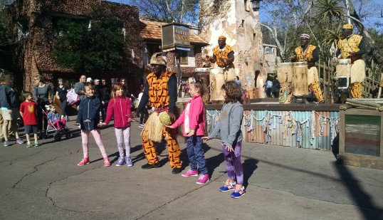 Animal Kingdom African Music & Dance