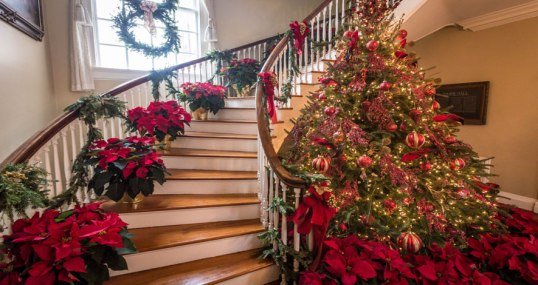 Glimpse Inside a Well-Manicured Historic house (note poinsettias)